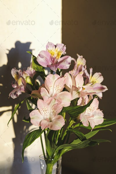 A bouquet of alstroemeria flowers in a glass vase with hard shadows on a sunset background