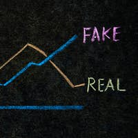 Fake and real information in the
