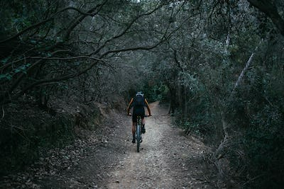 Man on mountain bike in forest trail
