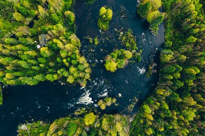 Aerial view of fast river in beautiful green spring forest in Finland.