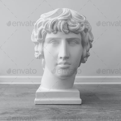 White plaster bust sculpture portrait young man