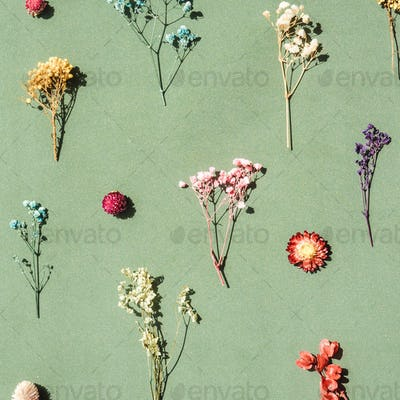 Floral pattern from dried flowers on green.