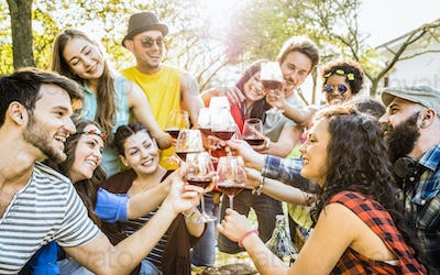Group of friends toasting red wine having fun outdoor cheering at bbq picnic