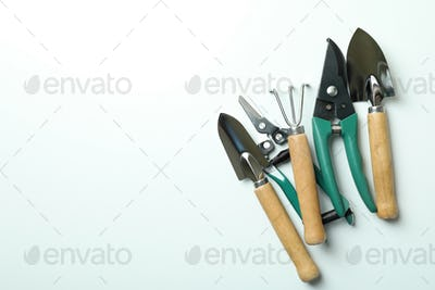 Gardening tools on white background, space for text