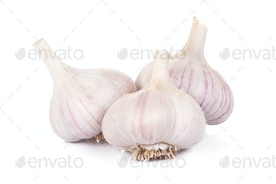 image of isolated garlics