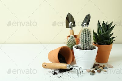 Concept of gardening on white table, space for text