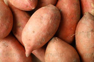 Sweet potato on whole background, close up. Vegetables