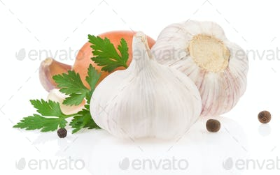 garlic food spices isolated on white