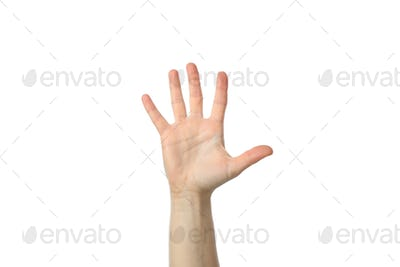 Female hand isolated on white background. Gestures