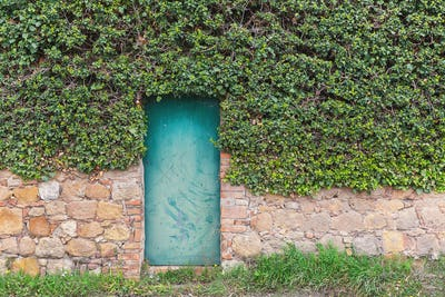 Green vintage door on the old wall