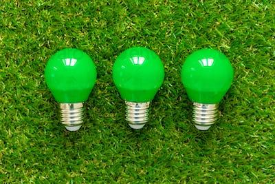 Energy efficient light bulb lying on grass