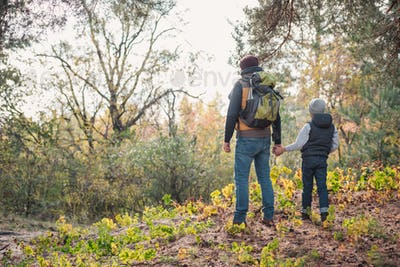 back view of father and son holding hands while hiking together in autumn forest