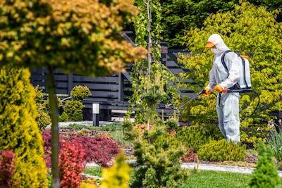 Fungicides of Backyard Garden Plants by Professional Garden Worker