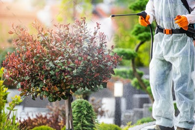 Garden Plants and Trees Fungicide and Pesticide Job