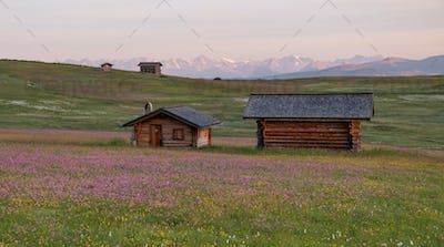 Sunrise on the meadows of the Dolomites mountains