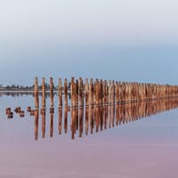 Wooden obstacles in the sea of Jarilgach island, Ukraine. At daytime