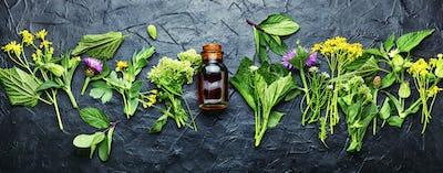 Natural medicine,fresh herbs