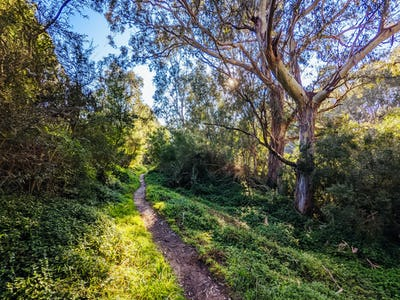 Yarra Trails in Melbourne Australia