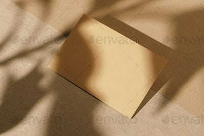 Foliage shadow on paper background with business card