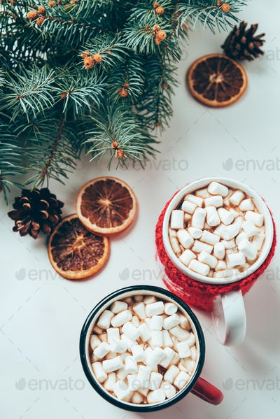 top view of cups of hot chocolate with marshmallows and pine tree branches on white surface,
