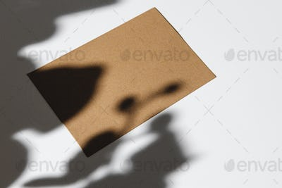 Business card on paper background with foliage shadow