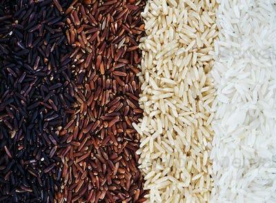 Closeup of mixed rice