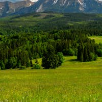 Scenic High Tatras Mountains and  Green Pasture in Lapszanka Valley at Summer.