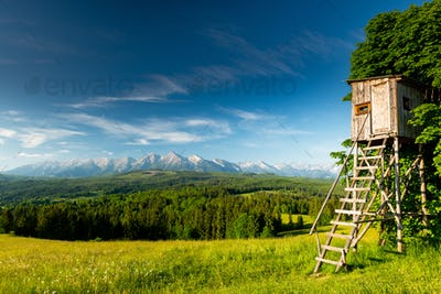 Hunting Tower at Green Meadow in Lapszanka Valley in Tatra Mountains, Poland