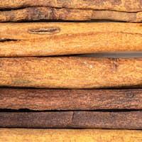 several sticks of cassia cinnamon close up