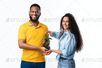 Multicultural Couple Holding Pot With Green Plant Over White Background