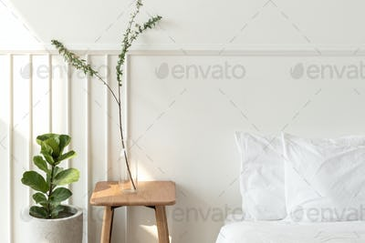 House plants by a mattress on the floor