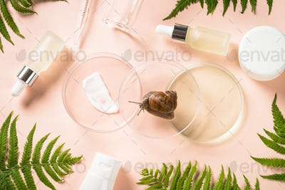 Glass petri dish with cosmetic products and green plants