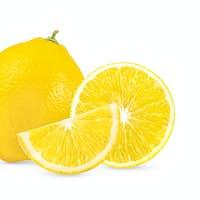lemon isolated on white background full depth of field