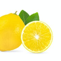 lemon with leaf  isolated on white background full depth of field