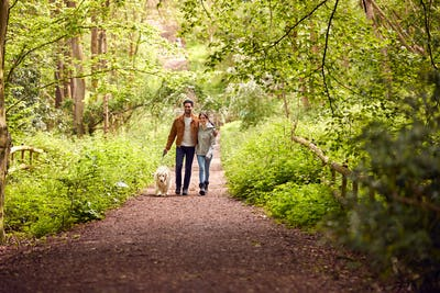 Couple With Pet Golden Retriever Dog Walking Along Path Through Trees In Countryside