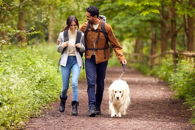 Couple With Pet Golden Retriever Dog Hiking Along Path Through Trees In Countryside