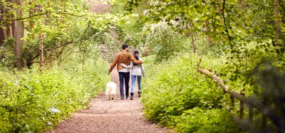 Rear View Of Couple With Pet Dog Walking Along Path Through Trees In Countryside