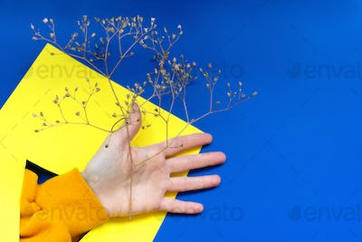 Hand with dry branch through yellow paper.