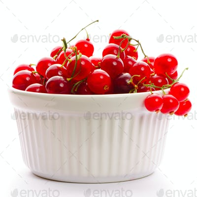 Redcurrant in bowl