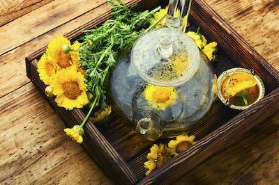 Teapot with fresh flower tea,herbal medicine