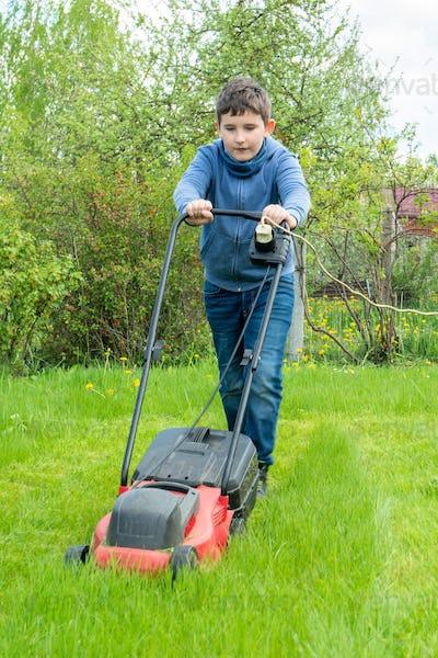 Nine years boy mow grass in backyard or in garden, vertical
