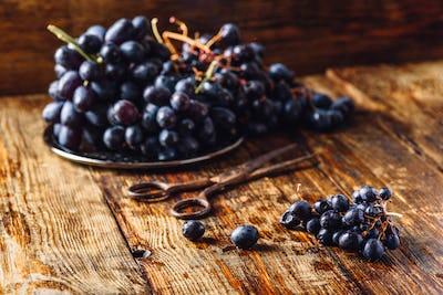 Blue Vine Grapes.