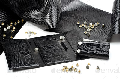 Black glancy pieces of leather