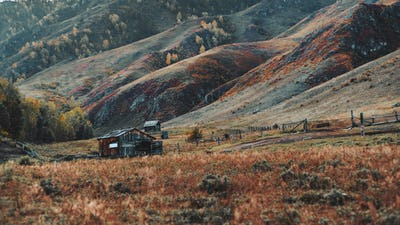 Fall mountain scenery with a shack