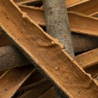 Dried Cinnamon bark close up full frame