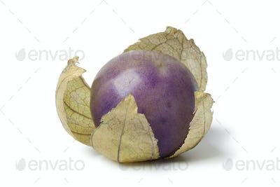 Fresh purple tomatillo