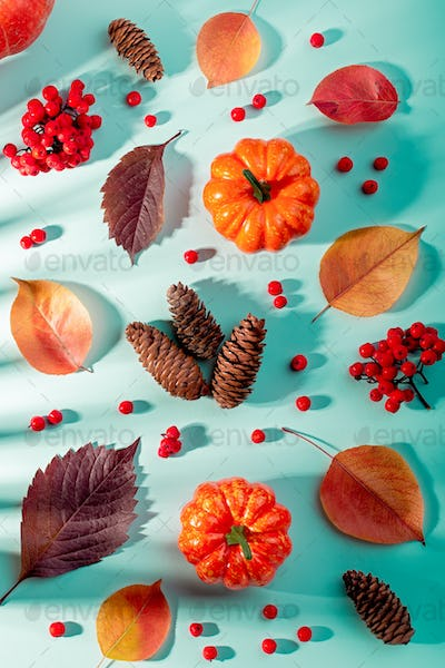 Autumn composition with leaves, pumpkins, rowan berries on mint background