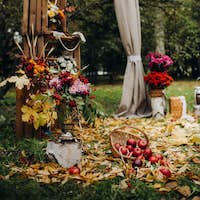 Autumn wedding ceremony on the street on the green lawn.Decor with arches of fresh flowers for the