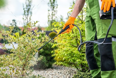 Gardener Scheduled Spring Time Insecticide and Fungicide Job