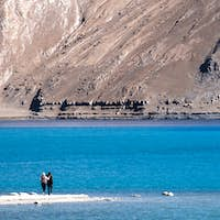 Two tourists with landscape image of Pangong lake with mountains view background